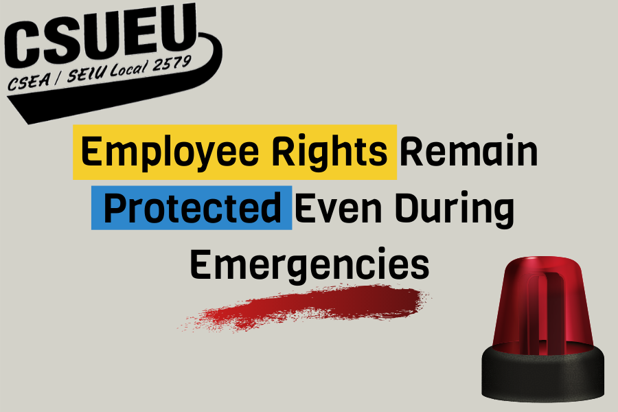 Graphic 031720 Employee Rights.png